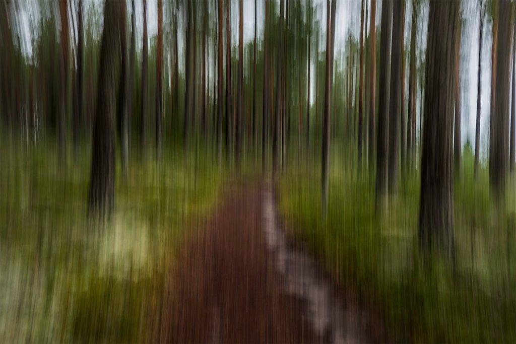 Nature-200803-024.jpg